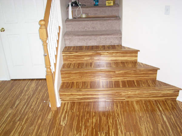 Bamboo Stairs (tigerwood)